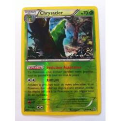 Chrysacier PV70 - 2/106 Pokemon Carte Holographique