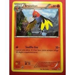 Braisillon PV80 - 17/106