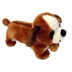 Trousse chien Saint Bernard
