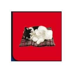 Chat sur coussin, objet décoratif très proche de la réalité on dirait un vrai chat